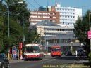 Škoda 14 Tr ev.č. 6282 stanicuje v zastávce Magurská ( v pozadí 6292 ). - 9.7.2010